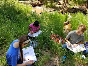 FB group in grass looking at plant features